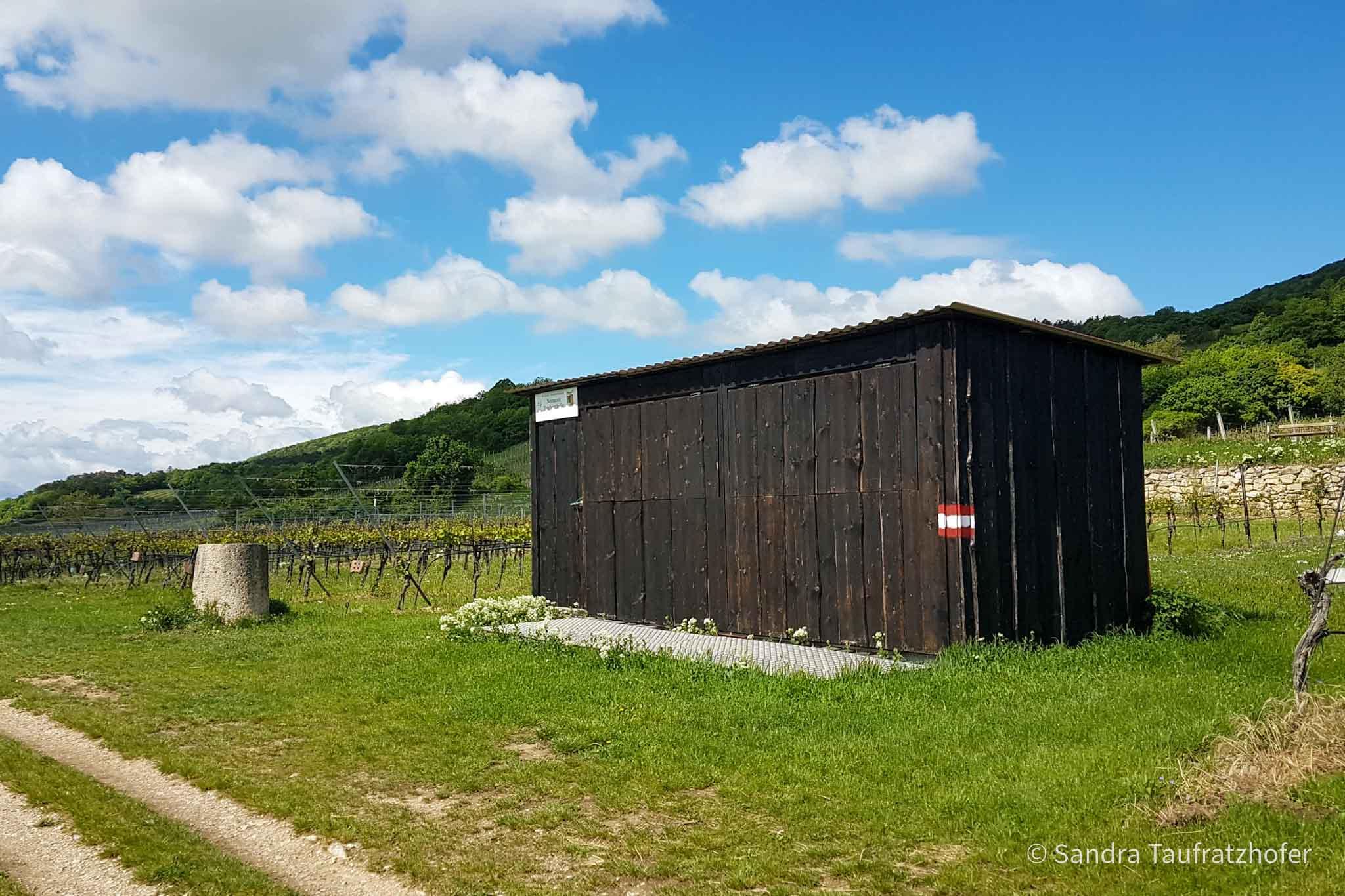 Sturmhütte Taufratzhofer in den Weingärten von Gumpoldskirchen, Frühling (© Sandra Taufratzhofer)