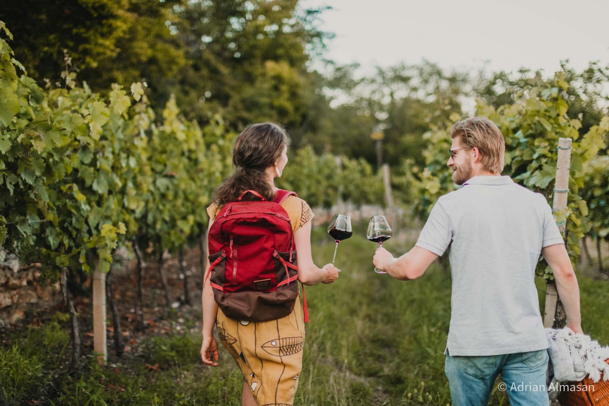 Geselliges Weintrinken im Weingarten (© Adrian Almasan)